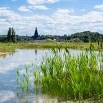 vragen over natuurbegraafplaats