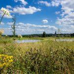 Aussicht Eygelshof Naturfriedhof