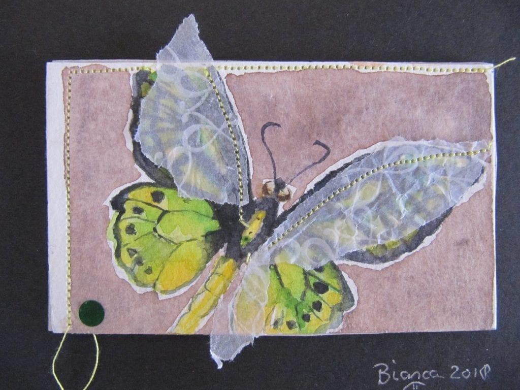 Vlinder Bianca van den Berg